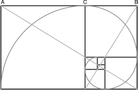 golden section rectangle the sophisticated composition thinglink