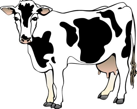 cow clipart cow clipart cow 11 clip vector clip