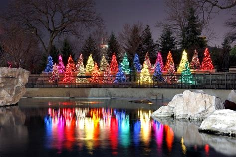 Columbus Ohio Zoo Lights Our Community Pinterest Columbus Zoo Zoo Lights