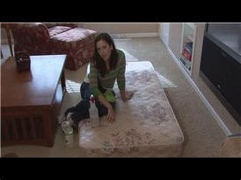 Cleaning Urine Out Of Mattress by Housekeeping Tips How To Clean Urine Out Of A Mattress