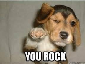 You Rock Meme - sister you rock puppy love quickmeme
