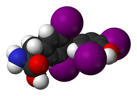 imagenes animadas wikipedia hormona tiroidea wikipedia la enciclopedia libre