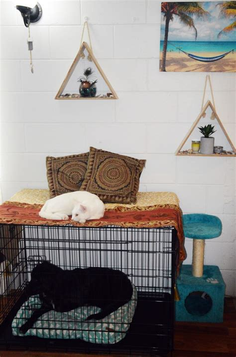 pet home decor pet home decor hacks that dog cat owners will love