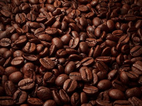 Coffee Seeds Wallpaper Hd Wallpaper Background | desktop wallpaper coffee seeds macro desktop wallpaper