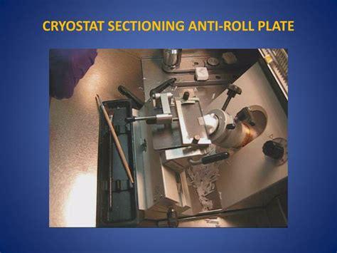 cryostat sectioning ppt tissue freezing methods for cryostat sectioning