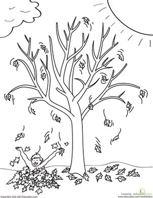 fall coloring pages for middle school fall tree worksheet education com