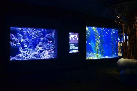 Lu Metal Halide Untuk Aquarium metal halide lighting segera dipecat orphek