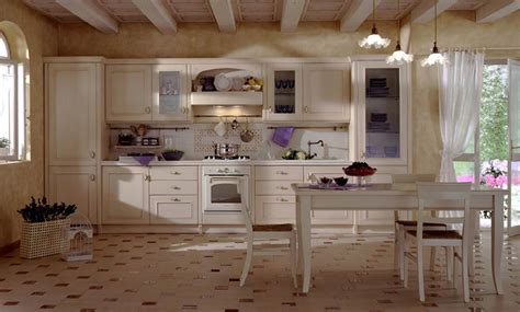 European Style Kitchen Cabinets by European Style Kitchen Cabinets Kitchenidease