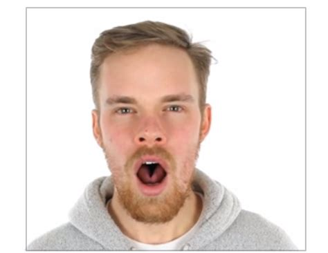 what does it when a yawns is yawning actually contagious science has the answer salon