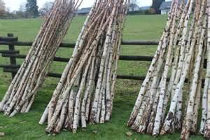 birkenholz dekoration nat 252 rliches birken und erlenholz zum basteln und