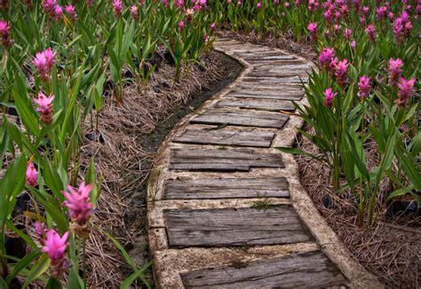 Faire Une Allée De Jardin En Gravier 3462 by Idee Per Allestire Un Sentiero In Giardino Idee Interior