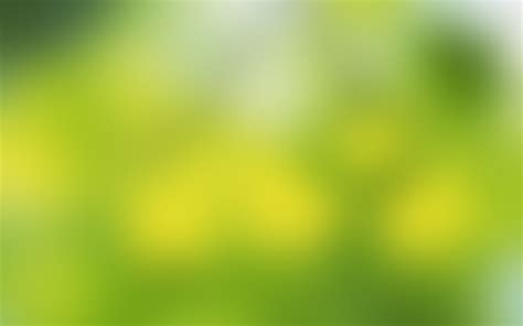 Wallpaper Soft Green | soft green 2560 x 1600 widescreen wallpaper