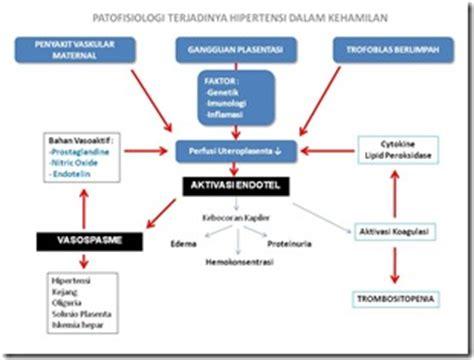 disfungsi endotel informasi reproduksi hipertensi dalam kehamilan