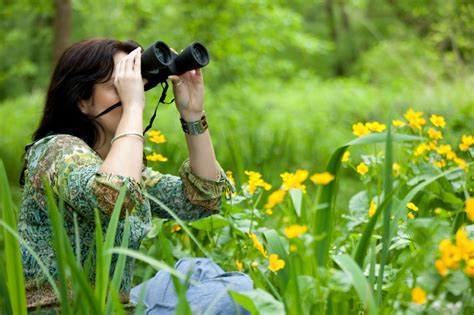 backyard bird watch bird watching tips for beginners blain s farm fleet blog