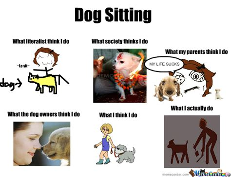 Sitting Meme - dog sitting by nyandeerxd meme center