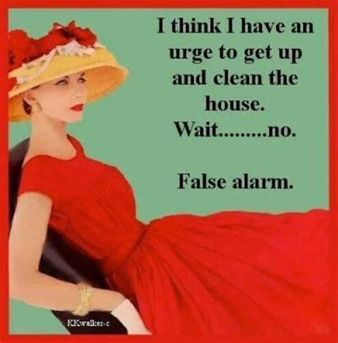 cleaning the house funny quotes cleaning house
