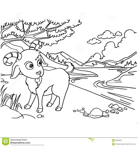 nubian goat coloring pages goat coloring pages vector stock vector image of coloring