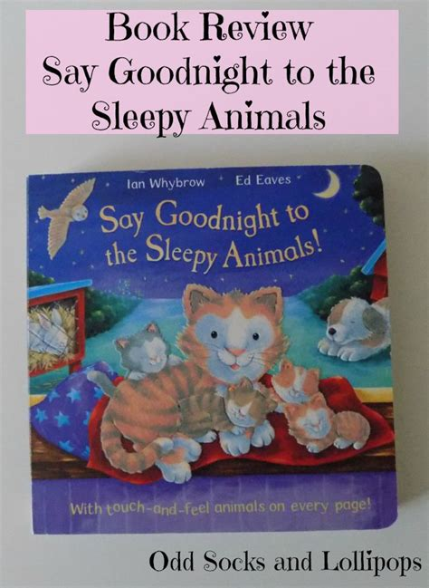 Story Book Say Boo To The Animals say to the sleepy animals review socks and lollipops