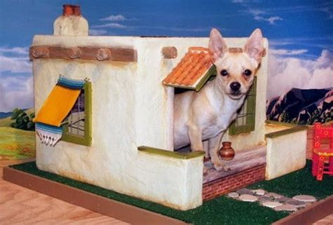 chihuahua dog houses creative dog house design ideas 31 pictures removeandreplace com
