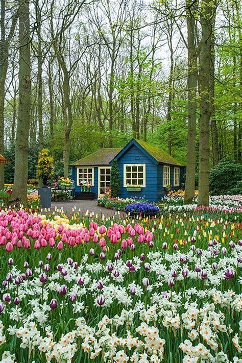 Keukenhof Gardens Amsterdam Netherlands Keukenhof Also Flower Garden In Amsterdam