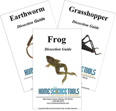 earthworm dissection specimens introductory dissection kit specimens tools guides