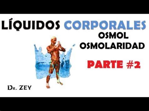 clase fisiologia y patologia renal 2008 youtube fisiologia del ri 209 on wmv funnydog tv