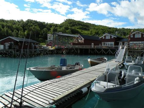fishing boat hire norway cod bless norway planet sea fishing