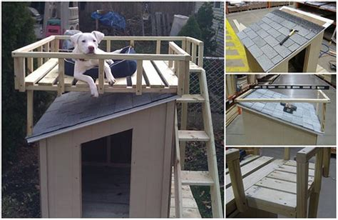 dog house with deck on top how to build a dog house with a top deck