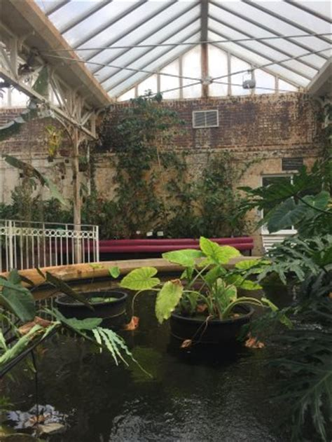 Hotels Near Birmingham Botanical Gardens Birmingham Botanical Gardens And Glasshouses Top Tips Before You Go Tripadvisor