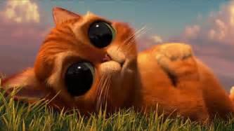 puss boots eye cute