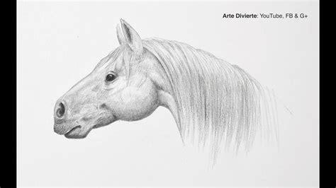 blanco y negro pintura lineal dibujar caballo ilustraci 243 n c 243 mo dibujar una cabeza de caballo paso a paso f 225 cil