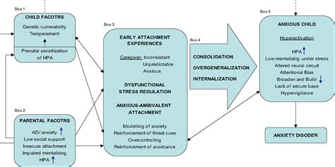 attachment theory in building connections between children and parents books huis muur working model of attachment
