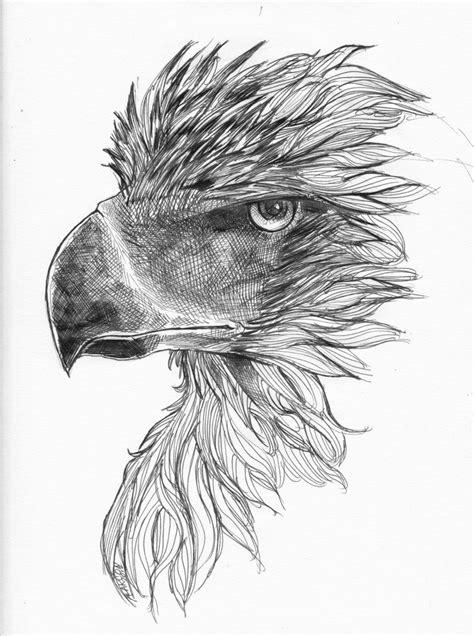 philippine eagle tattoo designs philippine eagle by praetorkai deviantart on