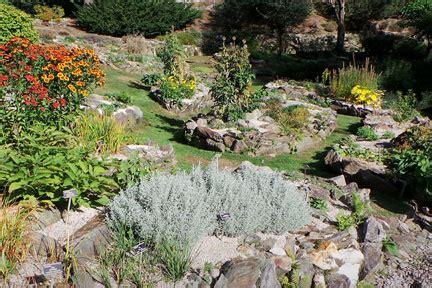Rock Garden Definition Rock Gardening Rhs Gardening
