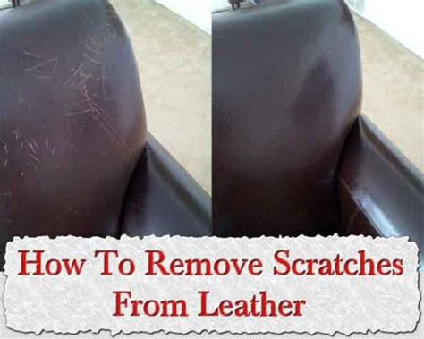 How To Fix Scratches On Leather Sofa by 9 Best Images About Leather Care Cleaning And