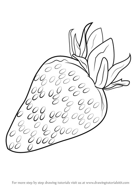 Strawberry Outline Drawing by Step By Step How To Draw Strawberry Drawingtutorials101