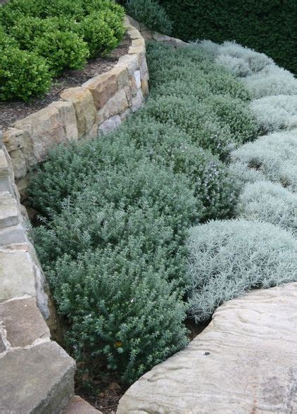 Garden Rocks Sydney 1000 Ideas About Retaining Wall Gardens On Retaining Walls Walled Garden And