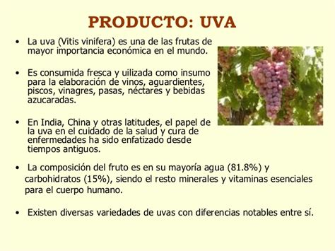 diferencias entre uva verde y morada cocinadelirante tipos de uvas