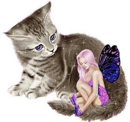 una noche un gato mai multe poze miscatoare gasiti pe celalalt blog al meu