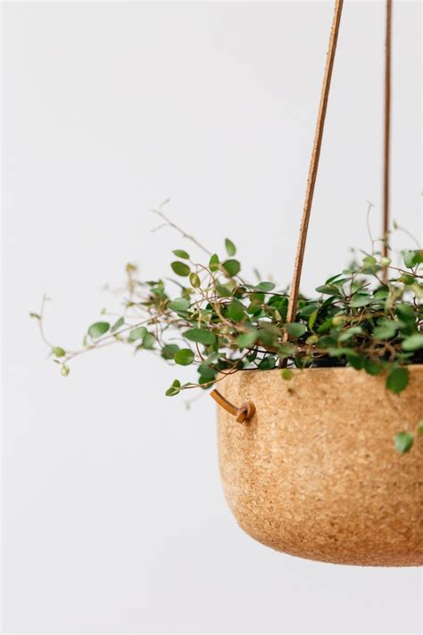 Large Hanging Planters by Large Hanging Planter Gardenista