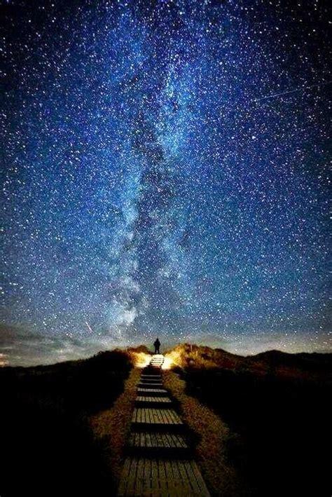 imagenes de jardines nocturnos paisajes y lugares hermosos paisajes nocturnos