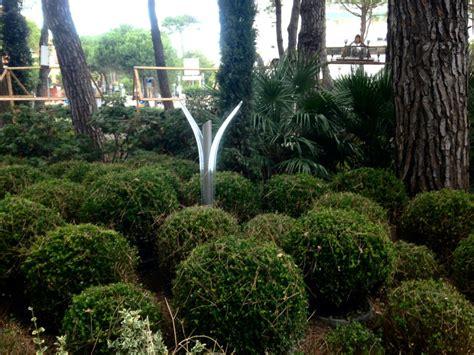 cespugli giardino lioncini da esterno in cespugli giardino