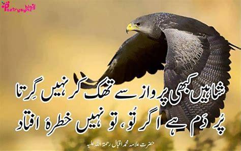 Mera Pasandida Shair Allama Iqbal Essay In Urdu by Poetry Allama Iqbal Motivational Poetry Pictures In Urdu On Allama Iqbal