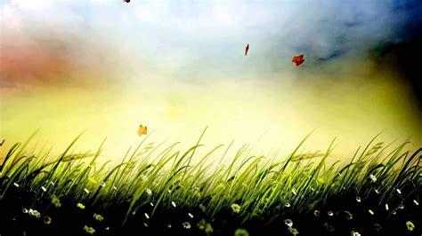 xolo black hd wallpaper grass background video effects video effects hd free