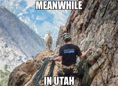 Utah Memes - 15 downright funny memes you ll only get if you re from utah