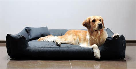 hunde bett hundebett moritz l 100 cm polyester 600d graphit tierlando 174