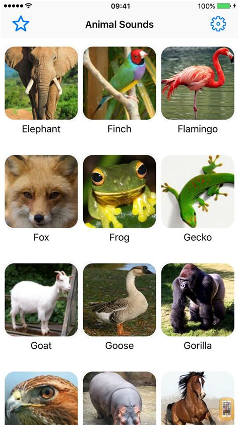 animal sounds pro farm jungle voices  kids  iphone ipad app info stats iosnoops