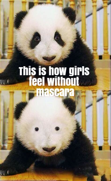 Panda Mascara Meme - importance of eye makeup rebrn com