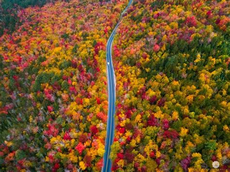 new fall colors fall colors in new hshire today s image earthsky