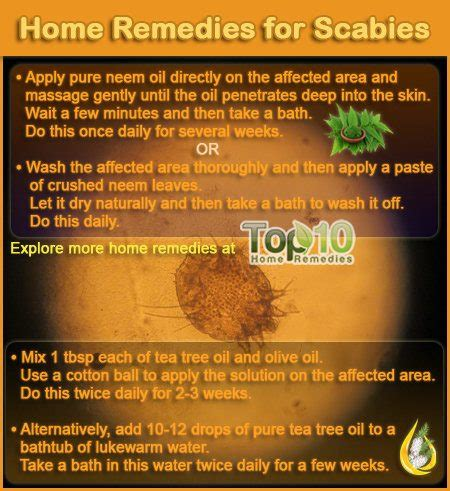 home remedies for scabies top 10 home remedies